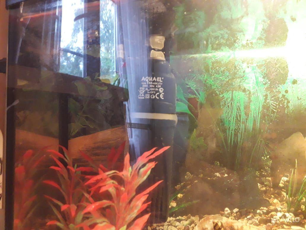 Аквариум с рыбками 25 литрой купить на Зозу.ру - фотография № 5