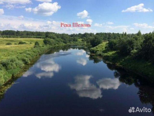 псковская область река шелонь видео о рыбалке