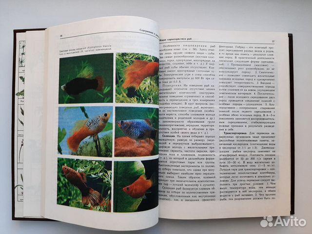 Книга Декоративное рыбоводство